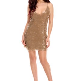Glam night short dress nude