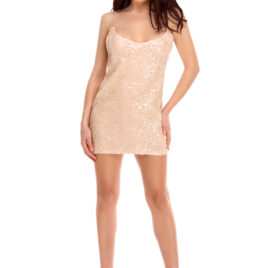 Glam night short dress rose
