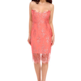 Glam chantilly lace short dress rose