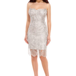 Glam chantilly lace short dress silver