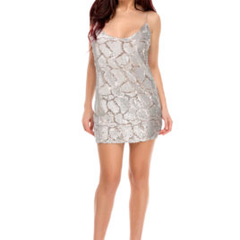 Glam night short dress silver